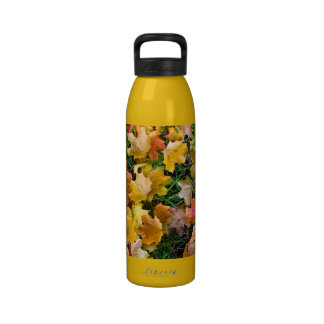 Falling maple leaves on a ground reusable water bottle