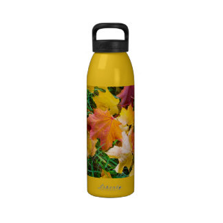 Falling maple leaves on a ground drinking bottle