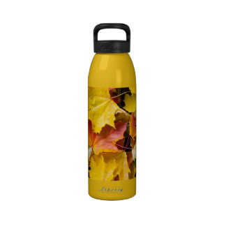 Falling maple leaves on a ground drinking bottles