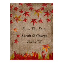 falling maple leaves save the date postcard