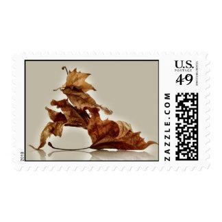 Falling plane leaves stamp