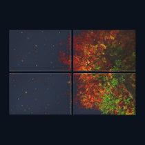 Falling Rainbow Canvas Print