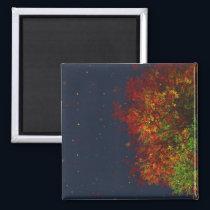 Falling Rainbow Magnet