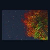 Falling Rainbow Photo Print
