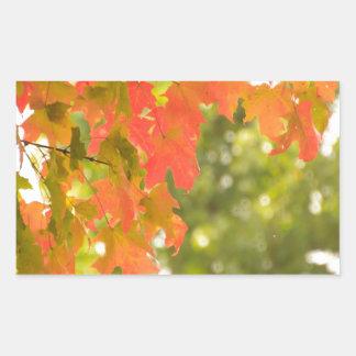 Falling Rectangular Sticker