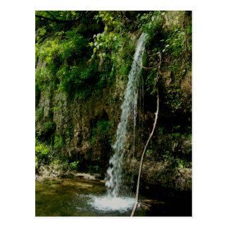 Falling Spring Waterfall Postcard