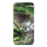 Falling Trees Green River Banks Posterized Case For iPhone 5