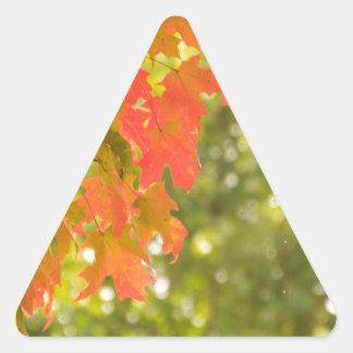 Falling Triangle Sticker