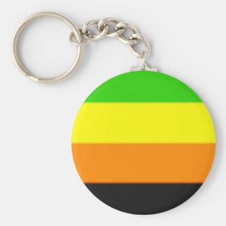 Fallln Aromantic Pride Flag Keychain