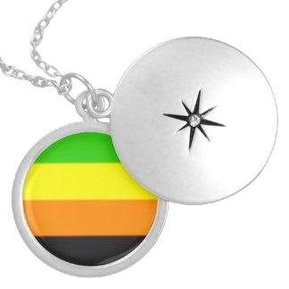 Fallln Aromantic Pride Flag Round Locket Necklace