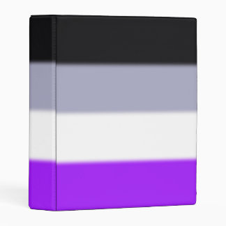 Falln Asexual Pride Flag Mini Binder