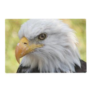 Falln Bald Eagle Liberty Placemat