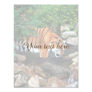 Falln Drinking Tiger Card