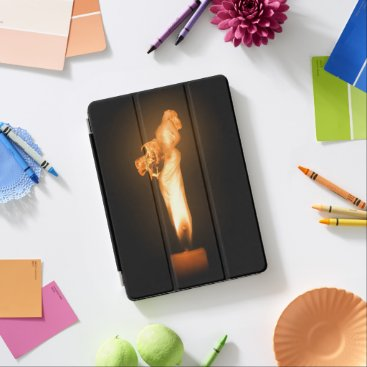 Halloween Themed Falln Fire iPad Pro Cover