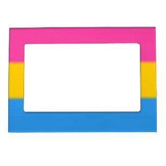 Falln Pansexual Pride Flag Magnetic Frame