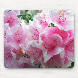 Falln Pink Floral Blossoms Mouse Pad