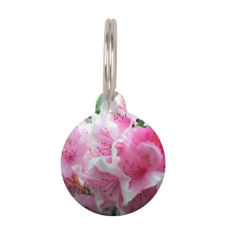 Falln Pink Floral Blossoms Pet Tag