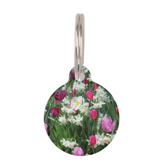 Falln Romantic Spring Morning Pet Tag
