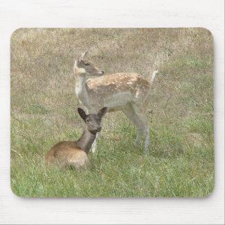 Fallow Deer Fawns Mousepad