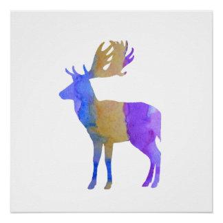 Fallow Deer Poster