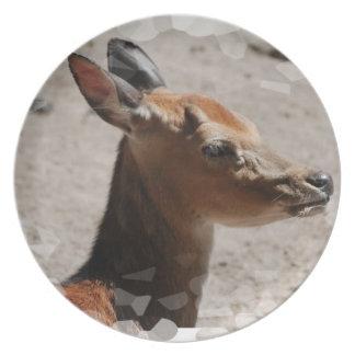Fallow Deer Profile  Plate