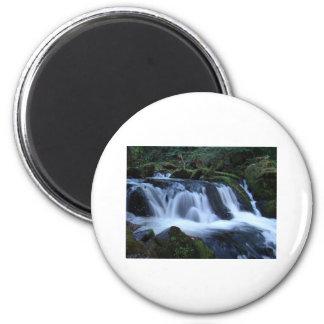 falls2 2 inch round magnet