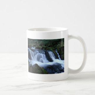 falls2 coffee mug