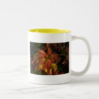 Fall's Festive Colors Two-Tone Coffee Mug