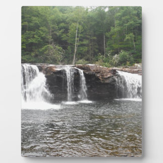 Falls of the Cheat Plaque