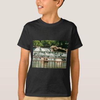 Falls on the rocks T-Shirt