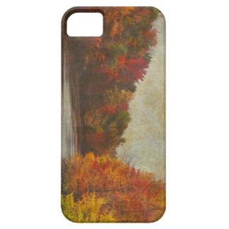 Falls Palate iPhone SE/5/5s Case