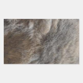 Falsa mirada de la piel del gato rectangular pegatina