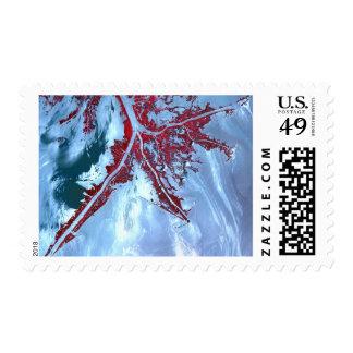 False color satellite postage stamp