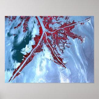 False color satellite poster