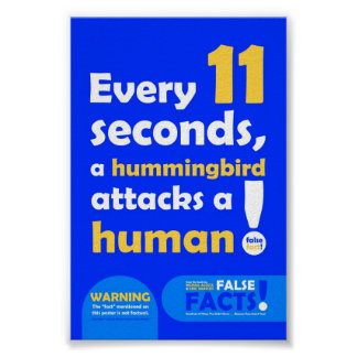 FALSE FACT Hummingbird Poster
