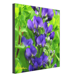False Indigo Wrapped Canvas Work of Art