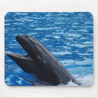 False Killer Whale Mouse Pad