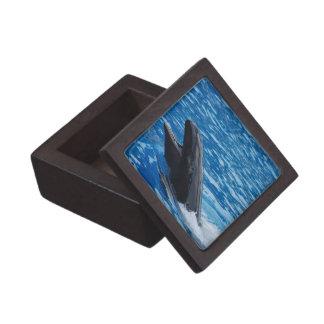 False Killer Whale Premium Gift Box