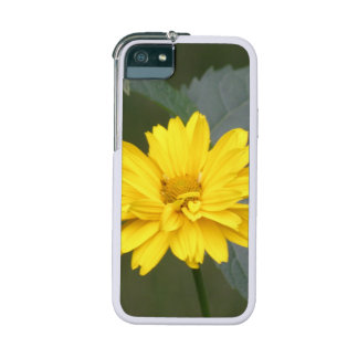 False Sunflowers iPhone 5/5S Covers