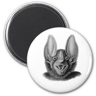 False Vampire Bat Fridge Magnet