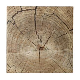 Falso fondo de los anillos de árbol teja cerámica