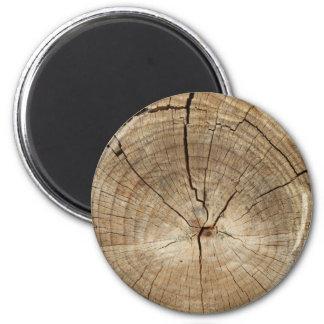Falso fondo de los anillos de árbol imán redondo 5 cm