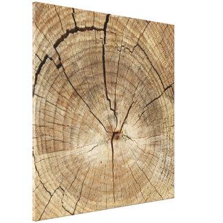Falso fondo de los anillos de árbol impresion de lienzo
