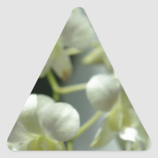 Falta de definición blanca bonita calcomanías de triangulos
