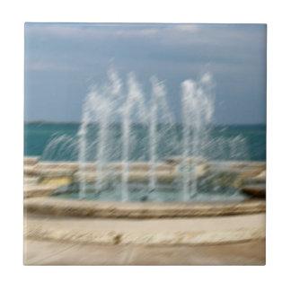 Falta de definición coralina del bosquejo del agua azulejo cuadrado pequeño