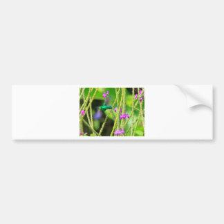 Falta de definición de cernido del colibrí pegatina para auto