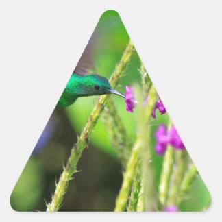 Falta de definición de cernido del colibrí calcomanía trianguladas personalizadas