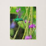Falta de definición de cernido del colibrí puzzles con fotos
