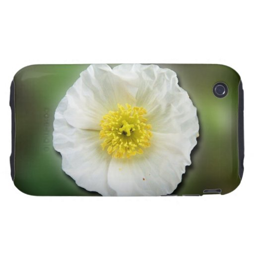 Falta de definición de la amapola blanca; Ningún t Tough iPhone 3 Protectores