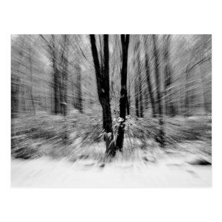 Falta de definición de maderas del invierno tarjetas postales